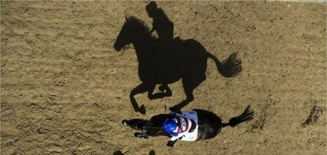 Equitation : à deux ans des Jeux mondiaux en Normandie | La Manche Libre | Actu Basse-Normandie (La Manche Libre) | Scoop.it