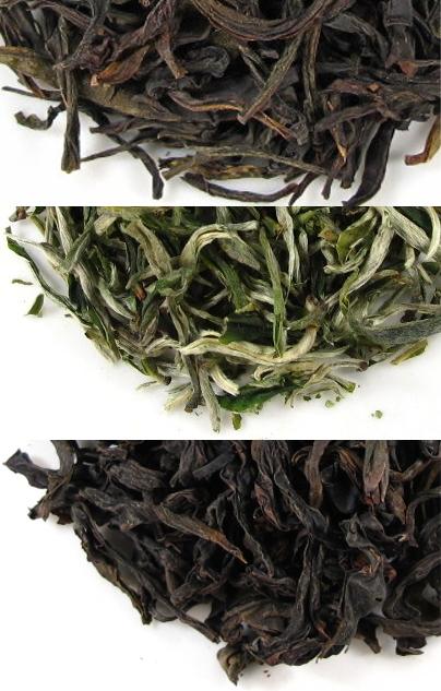3 nouveaux thés en catalogue... Vive le printemps du thé! | Actualités de Terre des Thés | Scoop.it
