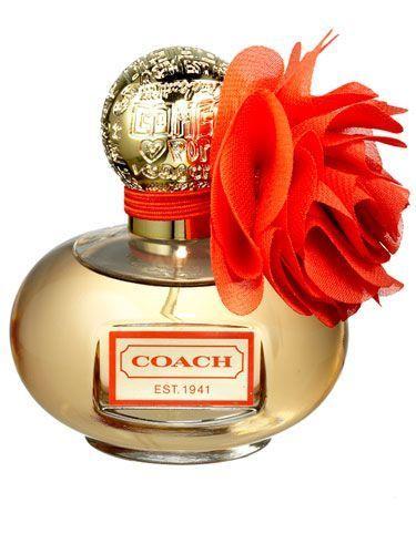 Perfume Shop in India | buy  perfume online | Scoop.it