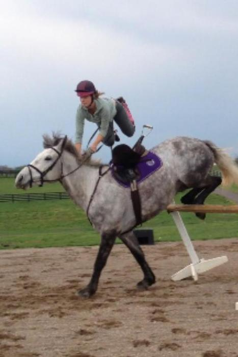 Spoof - Bad Jumping Clinic with George Morris « HORSE NATION | Equestrian Vacations | Scoop.it