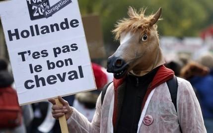 Équitaxe : poneys et cavaliers ont battu le pavé contre la hausse de la TVA - RTL.fr | Le cheval c'est mon dada ! | Scoop.it