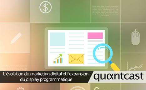 L'évolution du marketing digital et l'expansion du display - FrenchWeb   Emrys, nouveaux enjeux marketing pour les PME   Scoop.it