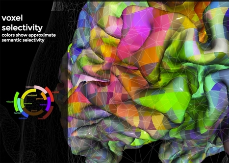 This Visualization of the Brain's Word Map Is Really Addicting—Here's Why | The future of medicine and health | Scoop.it