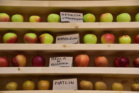 Slow Food perce lentement en France | Transitions | Scoop.it