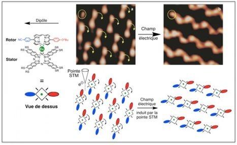 CEMES - Rotation synchronisée d'un réseau de rotors moléculaires   Actualité des laboratoires du CNRS en Midi-Pyrénées   Scoop.it