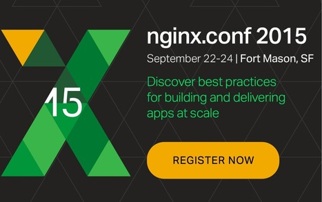 Launching nginScript and Looking Ahead - NGINX | EEDSP | Scoop.it