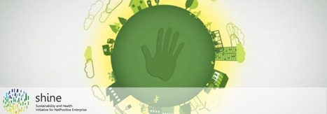 Handprint: A New Unit for Measuring Impact | The Center for Health and the Global Environment | Sustainable Futures | Scoop.it