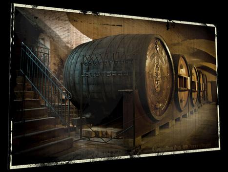 Pour le vin aussi l'innovation passe par le numérique | musée numérique | Scoop.it