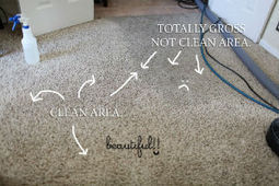 A+ Xpress Carpet Care is a well established cleaning service in this area | A+ Xpress Carpet Care | Scoop.it