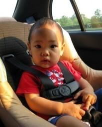 Baby Car Seats: Going Beyond the Basics | spectreinvestigativenetwork.com | infasecure.com.au | Scoop.it