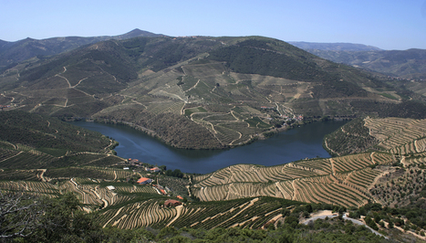 Cockburn's: Quinta dos Canais | The Douro Index | Scoop.it