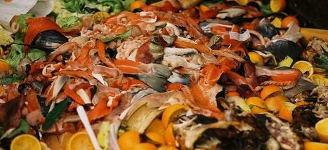 A Vancouver, le tri des déchets alimentaires va être obligatoire | Sustainability - Living Eating Working Traveling | Scoop.it