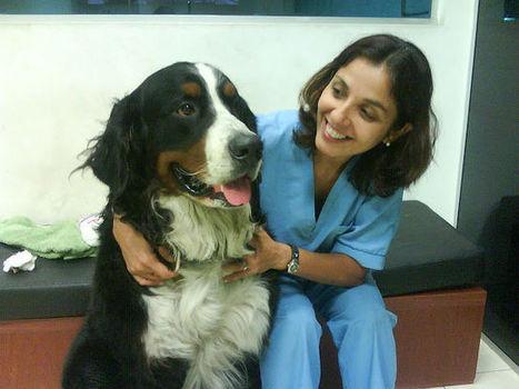 ¿Querés ser Veterinario? Miriam nos cuenta su experiencia | veterinaria | Scoop.it