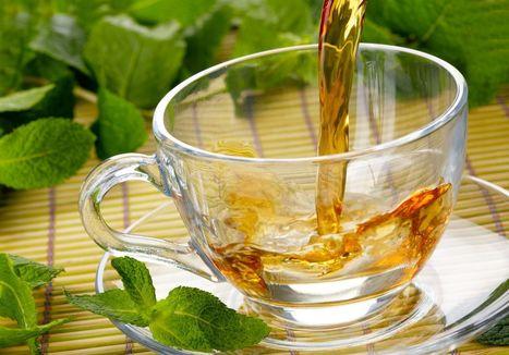 Health Benefits of White Tea   Business   Scoop.it