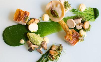 Restaurants - A Taste Of: Native Bush Tucker   Sydney Moving Guide   Scoop.it
