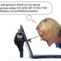 Server response survey results: Now, with more pepper spray! | ScoopSEO | Scoop.it