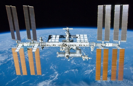 Scientists find traces of sea plankton on ISS surface | 21st Century Racism | Scoop.it