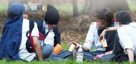 CONSECUENCIAS DEL CONSUMO DE ALCOHOL Y MARIHUANA: Que dicen los últimos estudios? | Información para adolescentes: En este sitio podrás acceder a temas que pueden interesarte! (Comité de extensión Rama de Adolescencia) | Scoop.it