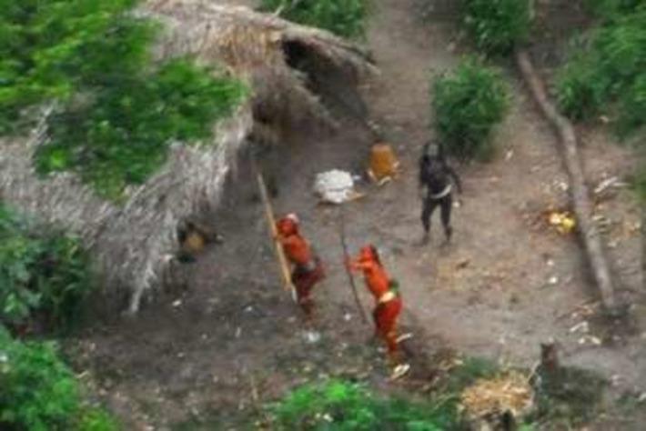 Les Indiens isolés abandonnés à leur sort devant l'invasion des bûcherons et des trafiquants de drogue | Survival International | Kiosque du monde : Amériques | Scoop.it