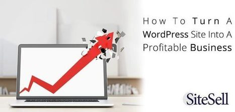 How To Turn A WordPress Site Into A Profitable Business - The SiteSell Blog | The Content Marketing Hat | Scoop.it