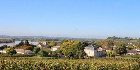Châteaux du Fronsadais ouverts | Le vin quotidien | Scoop.it
