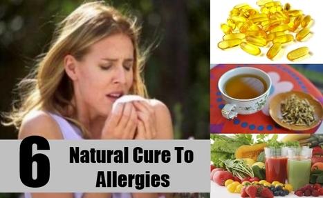 Effective Herbal Remedies for Seasonal Allergies   Planet Ayurveda   Scoop.it