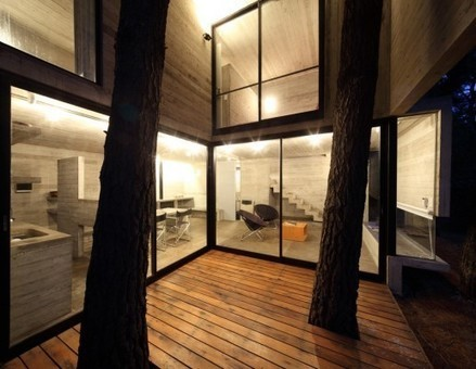 Franz House in Buenos Aires - e-architect | Arquitectura 2.0. | Scoop.it