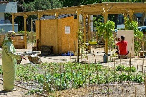 Un potager pour les locataires à Encagnane - Mairie d'Aix-en-Provence   Vivre autrement   Scoop.it