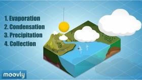 Créer capsule vidéo, présentation interactive, affichages animés… | | Licence pro I FOAD | Scoop.it