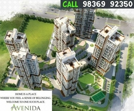 Avenida Rajarhat | Real Estate | Scoop.it