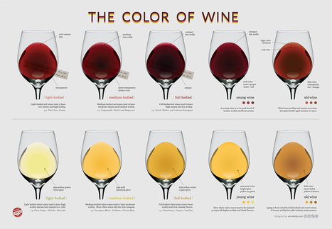 The Wine Color Chart | Wine Folly | Politically Incorrect | Scoop.it