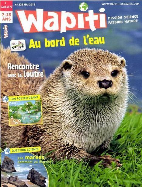 Wapiti n°338 - Mai 2015 | Revue de presse Pierre Flamens | Scoop.it