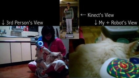 Remotely grooming a cat using a Kinect, Wiimote, treadmill and Nao robot | Artificial Intelligence and Robotics | Scoop.it