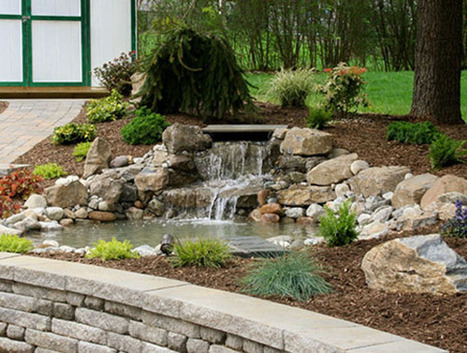 Things to know before you choose a pond pump   Pond Talk   Scoop.it