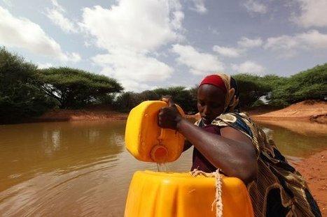 La ONU resalta el papel del agua como fuente de empleo y desarrollo @ONU_es | Agua | Scoop.it