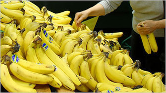 Bananas - The New York Times | Banana Facts and Rumors | Scoop.it