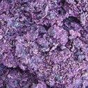 Un biocarburant au marc de raisin | Le Vin et + encore | Scoop.it