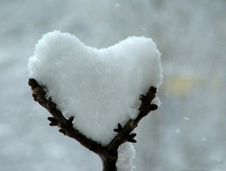 Happy Valentines day   FanPhobia - Celebrities Database   Celebrities and there News   Scoop.it