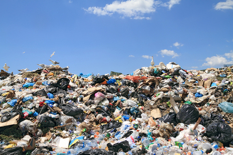 How to create wealth from waste and reduce our landfill | The Future of Water & Waste | Scoop.it