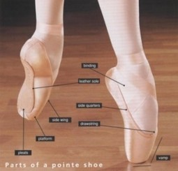 The Necessity of Choosing the Proper Ballet Pointe Shoes - Pied Piper   Ways to shop economic and safe Kids Footwear   Scoop.it