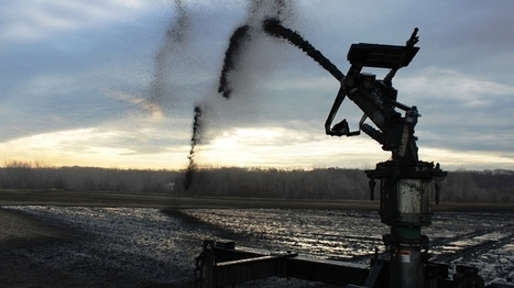 Cities Turn Sewage Into 'Black Gold' For Local Farms : NPR | Food issues | Scoop.it