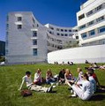 Erasmus Programme | ERASMUS PROGRAM | Scoop.it