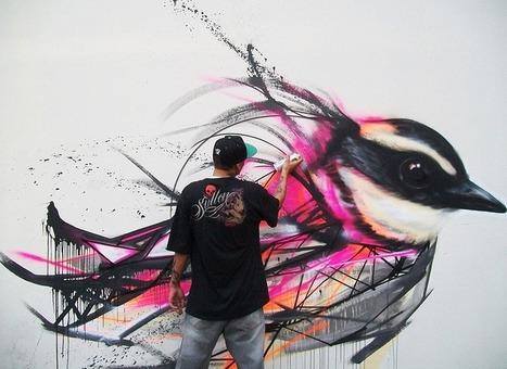 Cool Graffiti Birds on the streets of Brazil | Cool Art | Scoop.it