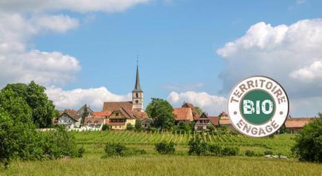 Le premier village Bio de France est situé en Aquitaine | Infos environnement | Scoop.it
