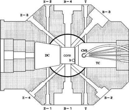 Development of a mono-energetic positron beam line at the Kyoto University Research Reactor   Nuclear Physics   Scoop.it