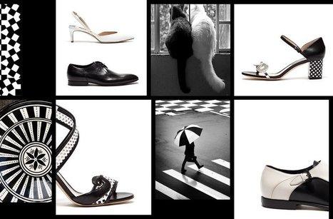 Black & White - Alberto Guardiani   Le Marche & Fashion   Scoop.it