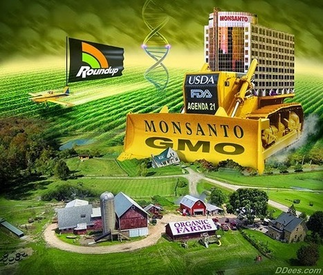 #MONSANTO KNEW OF #GLYPHOSATE and #Cancer 35 years ago! | Messenger for mother Earth | Scoop.it