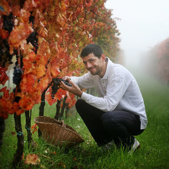 Tuscan Vines: Montefalco: The Wine, The People, The Passion | Umbria and Tuscany | Scoop.it