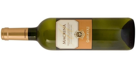 A Verdicchio among 8 crisp, lean Italian white wines to try | Wines and People | Scoop.it