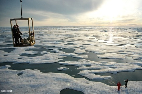 When It Comes to Arctic Drilling, Cumulative Effects Add Up   Alaska   Scoop.it